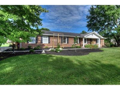 Johnson City Single Family Home For Sale: 1911 Sundale Rd