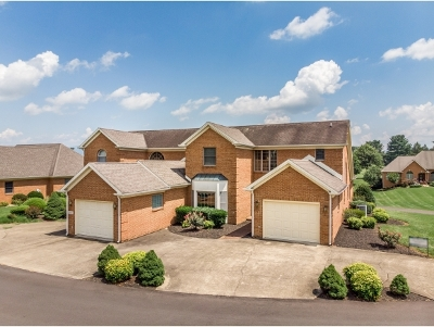 Greeneville Condo/Townhouse For Sale: 219-2 Southwind Circle #1