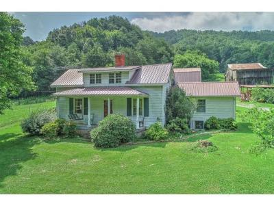 Rogersville Single Family Home For Sale: 1141 Tarpine Valley Rd
