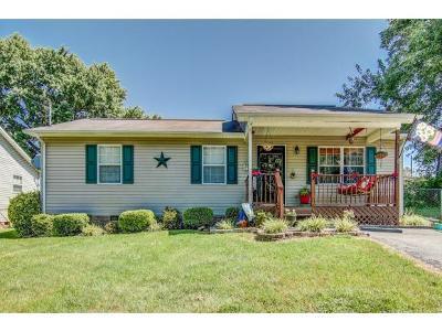 Elizabethton Single Family Home For Sale: 215 Parkway Blvd