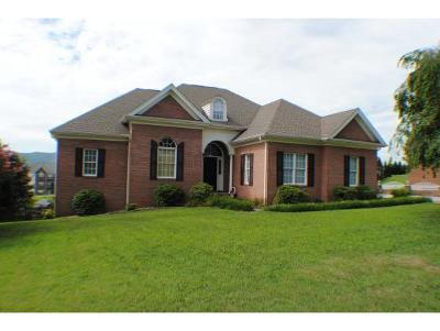 Kingsport Single Family Home For Sale: 1013 Allandale Circle