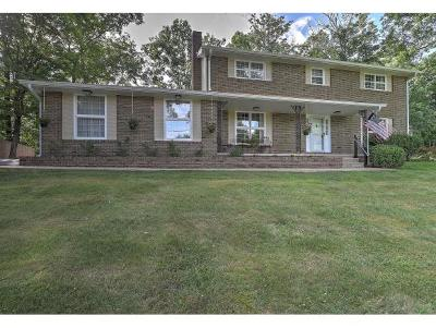Kingsport Single Family Home For Sale: 2452 Wildwood Dr.