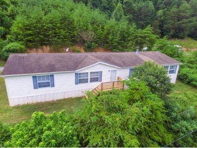 Hawkins County Single Family Home For Sale: 114 Hollow Hill Lane