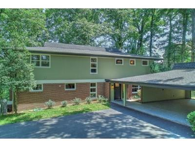 Bristol Single Family Home For Sale: 206 Skyline Dr.
