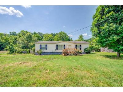 Afton TN Single Family Home For Sale: $64,900