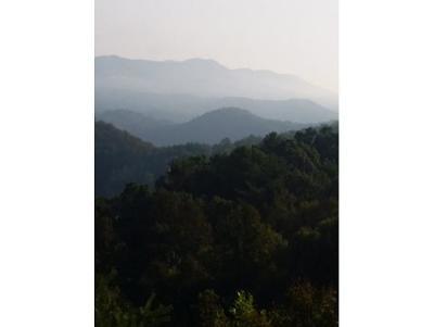 Butler Residential Lots & Land For Sale: LOT 14 Black Bear Drive