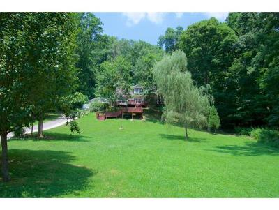Kingsport Single Family Home For Sale: 112 Tory Ln