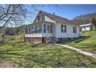 Abingdon Single Family Home For Sale: 23261 Brumley Gap