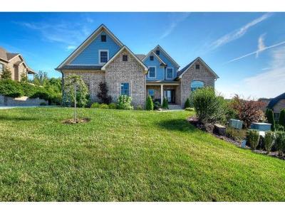 Johnson City Single Family Home For Sale: 2230 Sawyers Pond Dr