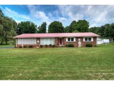 Elizabethton Single Family Home For Sale: 1733 Highway 91