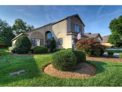 Johnson City Single Family Home For Sale: 835 Xanadu Ct.