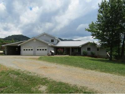 Greeneville Single Family Home For Sale: 4267 Kelley Gap Rd