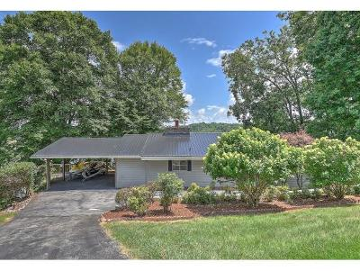 Blountville Single Family Home For Sale: 456 Lake Breeze