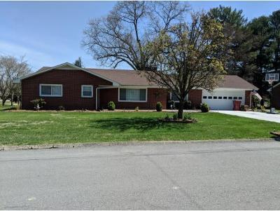 Johnson City Single Family Home For Sale: 4110 Navaho Drive