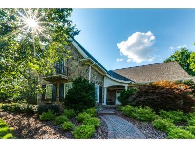 Johnson City Single Family Home For Sale: 12 Cox Farm Ct