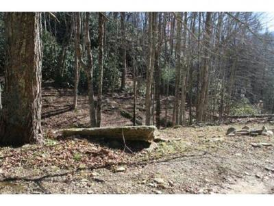 Residential Lots & Land For Sale: 225 Bear Branch Road