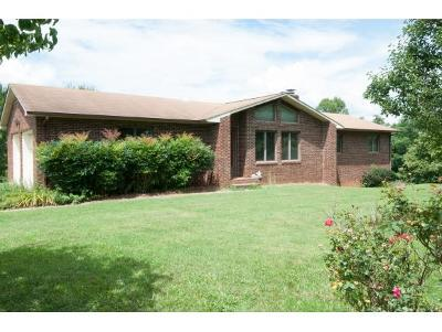 Johnson City Single Family Home For Sale: 725 Free Hill