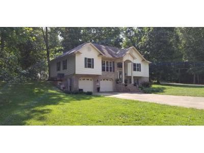 Rogersville Single Family Home For Sale: 257 Lauren Dr