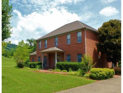 Rogersville Single Family Home For Sale: 200 Brooks Landing Circle