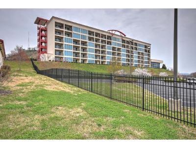 Bristol Condo/Townhouse For Sale: 210 Racdeday Center Dr #1101