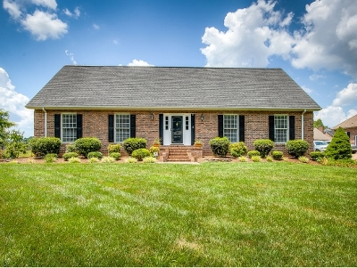 Blountville Single Family Home For Sale: 325 Courtney Drive