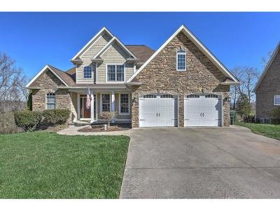 Jonesborough Single Family Home For Sale: 114 Timberlyne Parc