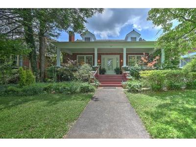 Johnson City Single Family Home For Sale: 707 W Maple St