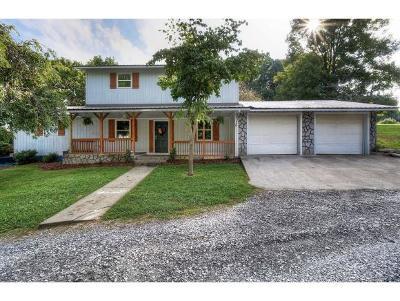 Elizabethton Single Family Home For Sale: 181 Hart Road