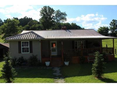 Elizabethton Single Family Home For Sale: 509 Garrison Hollow Rd
