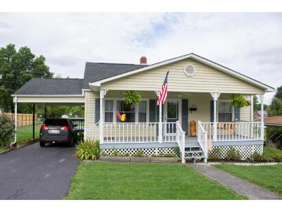 Elizabethton Single Family Home For Sale: 1025 Dejarnette Street