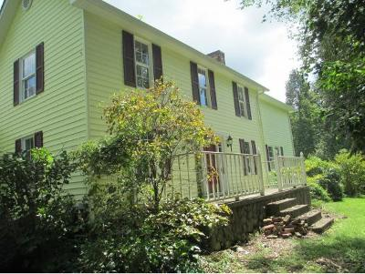Blountville Single Family Home For Sale: 329 Catawba Lane