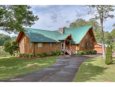 Blountville Single Family Home For Sale: 341 Barbara Drive