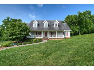 Elizabethton Single Family Home For Sale: 208 Ranger Drive