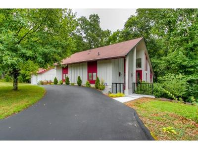 Kingsport Single Family Home For Sale: 2517 Essex Dr.
