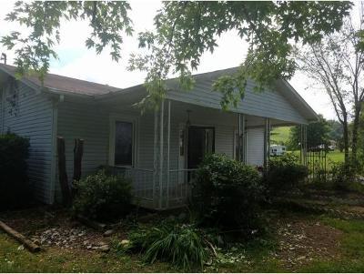 Single Family Home For Sale: 166 Kiser Circle