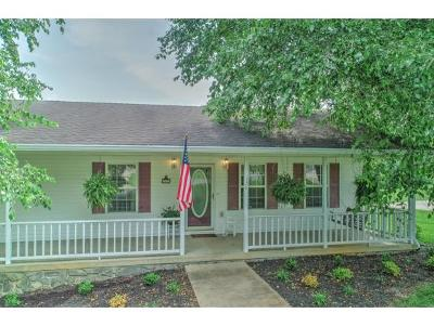 Greeneville Single Family Home For Sale: 120 Walnut Grove Road