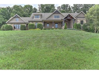 Jonesborough Single Family Home For Sale: 606 Hairetown Rd