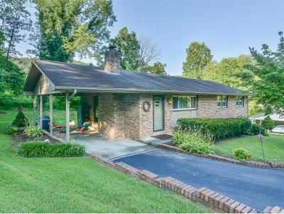 Blountville Single Family Home For Sale: 314 Woodvale Road