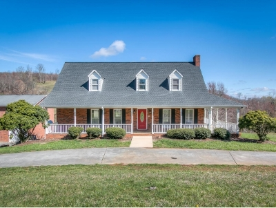 Kingsport Single Family Home For Sale: 659 Westfield Drive