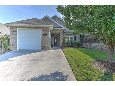 Johnson City Single Family Home For Sale: 527 Trillium Trail