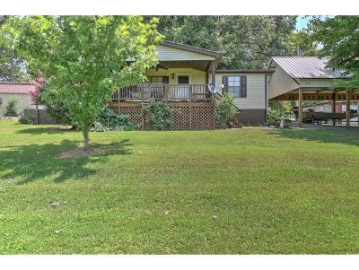 Rogersville Single Family Home For Sale: 281 Willis Road