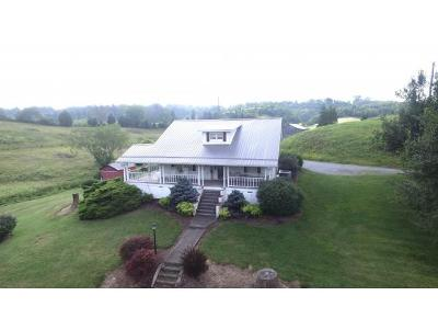 Rogersville Single Family Home For Sale: 920 Webster Valley Road