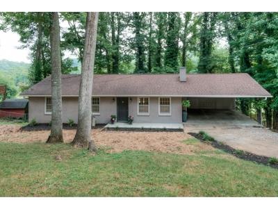 Bristol Single Family Home For Sale: 328 Mockingbird Rd