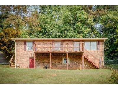 Kingsport Single Family Home For Sale: 423 Arrow Circle