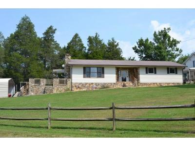 Rogersville Single Family Home For Sale: 345 Carters Valley Loop