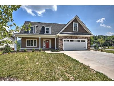 Kingsport Single Family Home For Sale: 222 Riverwatch Circle