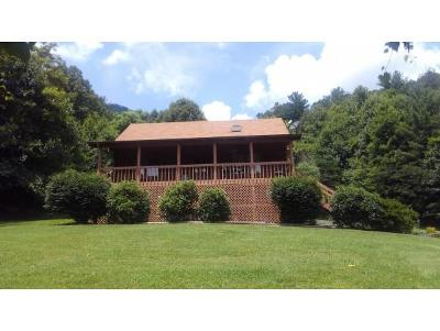 Unicoi Single Family Home For Sale: 531 Lower Stone Mtn Rd.