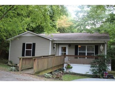 Rogersville Single Family Home For Sale: 410 N Armstrong