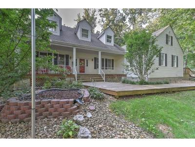 Kingsport TN Single Family Home For Sale: $340,000