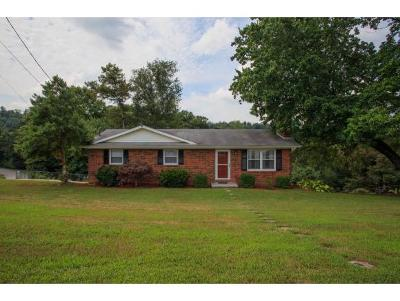 Kingsport TN Single Family Home For Sale: $135,000